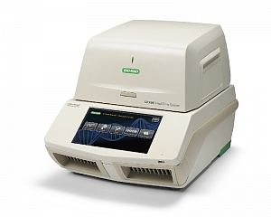 Амплификатор С1000 Touch Thermal Cycler